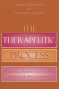The Therapeutic Process