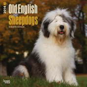 Old English Sheepdogs 2014 Wall Calendar