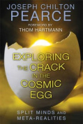 Exploring the Crack in the Cosmic Egg