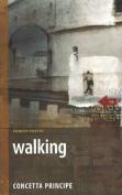Walking: Not a Nun's Diary