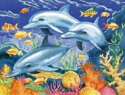 Reeves - Water Colour Paint By Numbers Dolphins