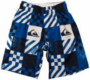 Quiksilver Atomic Youth Boy's Shorts