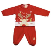 Gorgeous Red Velour Reindeer Two Piece Set By Zip Zap Size 0-3 Months