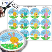 12 x PRE-CUT Easter Bunny - Edible Cake Toppers / Decorations