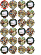 24 Wombles Cupcake Toppers
