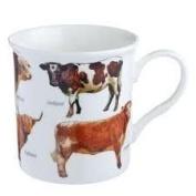 Fine Bone China Mug Cow Breeds Cow Mug BNIB