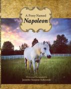 A Pony Named Napoleon
