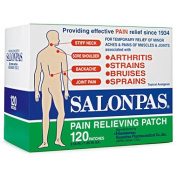 Salonpas Pain Relieving Patch - 120 Patches
