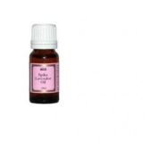 Lavender Spike Oil 10