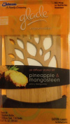 Expressions Diffuser Kit, Pineapple & Mangosteen, Bamboo, Diffuser/.67oz Refill