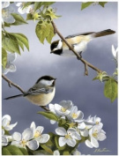 Reeves Spring Chicadee The Artists Collection Painting Set by Numbers, 23cm by 30cm