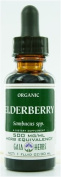 Gaia Herbs Black Elderberry, Gaia Organic 60ml