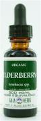 Gaia Herbs Black Elderberry, Gaia Organic 60ml