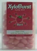 Berry Mints XyloBurst 70 ct Mint