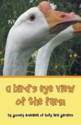 A Bird's Eye View of the Farm