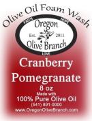 Cranberry Pomegranate Olive Oil Foam Wash 8 oz. (260Ml) Pump