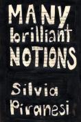 Many Brilliant Notions