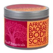 Planet Botanicals Foaming Body Scrub, Baobab, 120ml