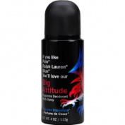 Big Attitude 120ml oz Deodorant Body Spray