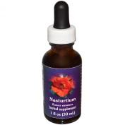 Flower Essence Services Nasturtium Dropper