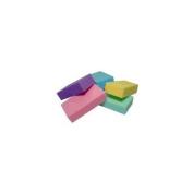 Tatania Pumice Sponge Block
