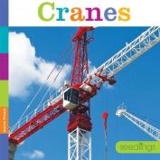 Cranes (Seedlings)