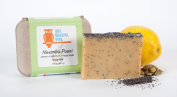 The Orange Owl 100% Vegan Soap Bar - Neembu Pani