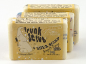 Trunk Scrub Shea Soap Fair Trade Ginger and Orange 3 Bars