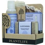 Spa Therapy Kit Lavender