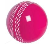 grey-NICOLLS Velocity Cricket Ball