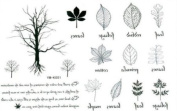 Tattoo Stickers Waterproof the English Small Trees Leaf Temporary Tattoos