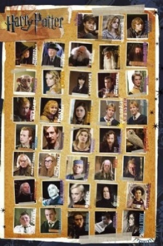 Film-Maxi-Poster-91-5x61cm-Harry-Potter-Character-Montage-Past-and-Present-Stars