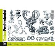 Tattoo Book of Various Snake Designs / Tattoo Flash Book Books / Tattoo Flash Art