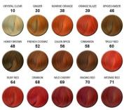 ADORE SEMI-PERMANENT HAIR COLOUR MAHOGANY (106)-118ml