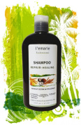 Wheat Germ & Coconut Shampoo Repair & Healing Essential Oils / Herbal Extracts with Argan Oil 470ml