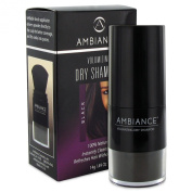 Ambiance Cosmetics Volumizing Dry Shampoo with Brush Applicator