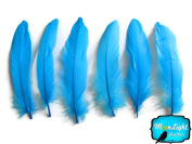 Moonlight Feather, Goose Feathers - Turquoise Blue Goose Satinettes Loose Feathers - 10ml