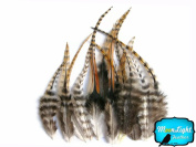 Hair Feathers ; 1 Dozen - SHORT CREE Grizzly Rooster Hair Extension Feathers