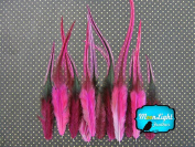 Hair Feathers ; 1 Dozen - SHORT HOT PINK Badger Rooster Feathers