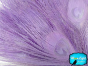 Moonlight Feather, Peacock Feathers - Lavender Bleached and Dyed Tails Peacock Feathers (Bulk) - 5 Pieces