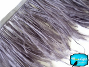 Moonlight Feather , Grey Ostrich Fringe Trim Feather - 15cm Strip of Ostrich Feathers