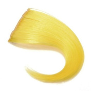 Pure Colour Two Clip Hair Bang Piece