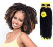 RastAfri Malibu Afro Kinky Braid