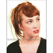 Modu Human Hair Bang Fringe Set