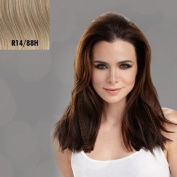 Hairdo for E! Live from the Red Carpet 41cm Texture Extension Hair Extensions