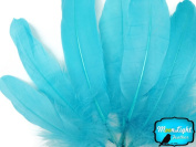 Moonlight Feather, Goose Feathers - Blue Goose Satinettes Loose Feathers (Bulk) - 1/4th Pound