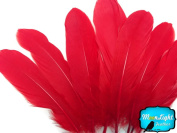 Moonlight Feather, Goose Feathers - Red Goose Satinettes Loose Feathers (Bulk) - 1/4th Pound