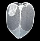 Foldable White Pop Up Mesh Washing Laundry Storage Basket
