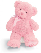 Gund 25.5cm My First Teddy for Newborn and Above