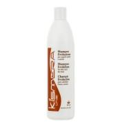 Kismera Shampoo Evolution - 500ml